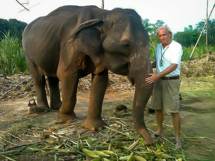 wfftedwinmetgereddeolifant-2