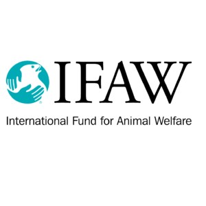 ifaw-foundation