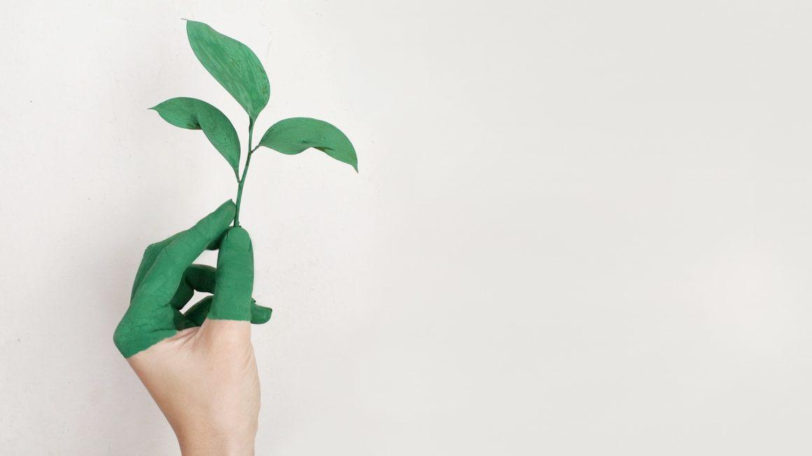 groene-hand