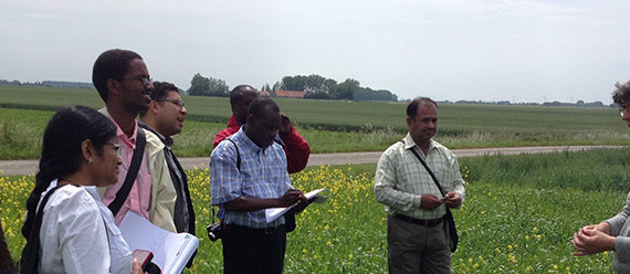 CDI-Gordijn-crop-for-measuremail