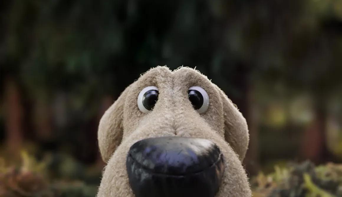 hond goed