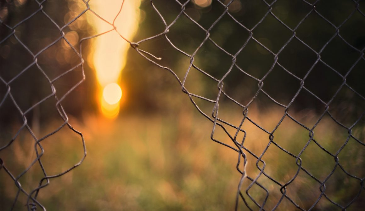 blurred-background-bokeh-colors-1133499