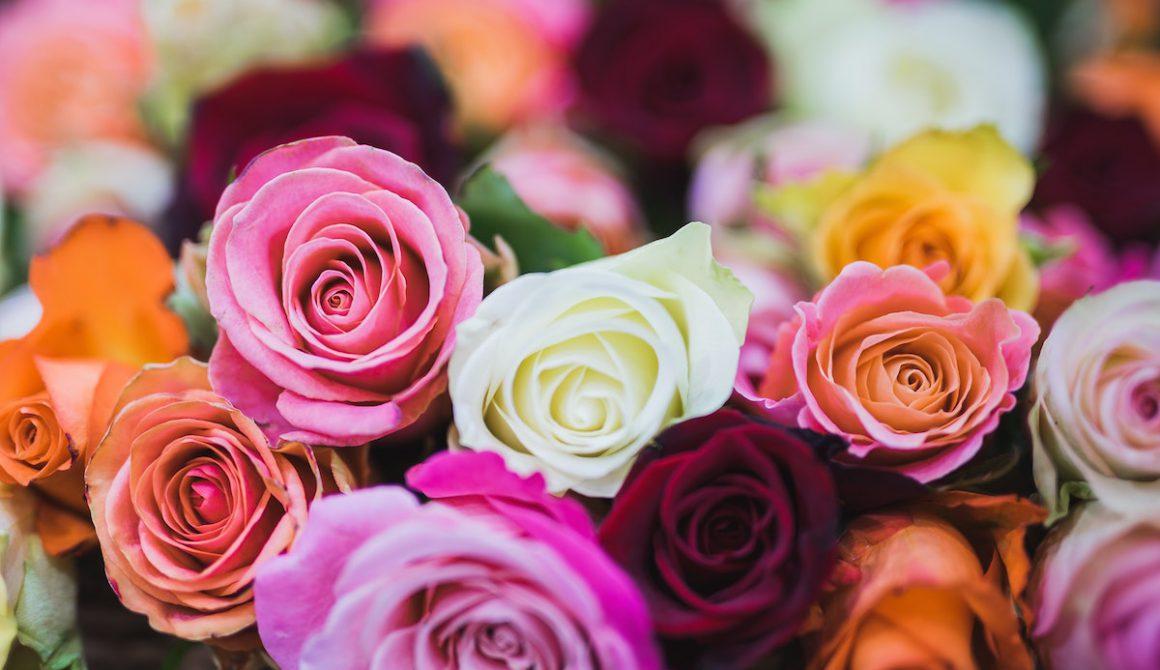 arrangement-beautiful-bloom-714918