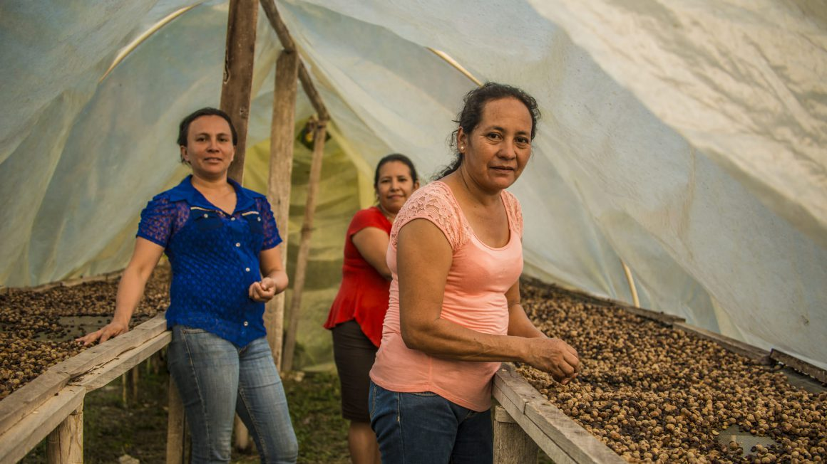Women-sort-ramon-nuts-and-spread-them-out-for-drying-at-their-processing-center-and-bakery-in-Ixlu-Guatemala.-Photo-credit-Sergio-Izquierdo.jpg
