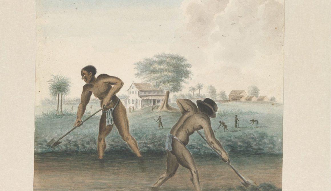 Slaven-werken-op-het-land2c-anoniem2c-ca.-1850-Collectie-Rijkmuseum na cut