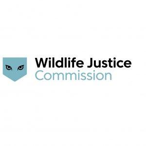 WJC-Logo-black+duckeggblue-long2-RGB-150dpi-DEF