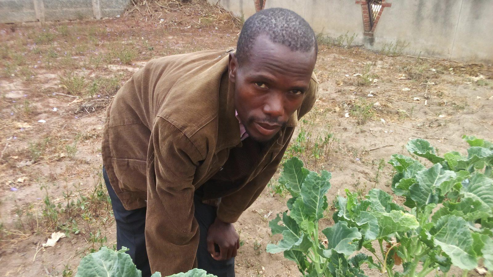 Leonard Madanhire, a farmer in Gutaurare area in Zimbabwe- Photo by Andrew Mambondiyani